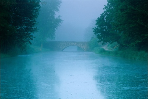 Morning-Mist-on-the-Canal-C2836